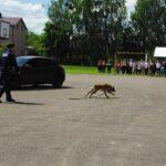 Akcja policyjna, zatrzymanie z psem - 4